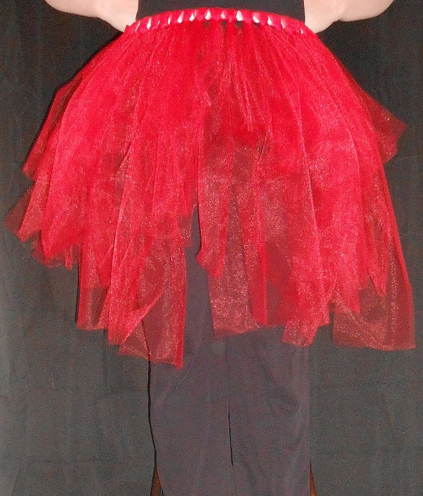 Regular Tattered Tu-Tu Tulle Skirt Front View