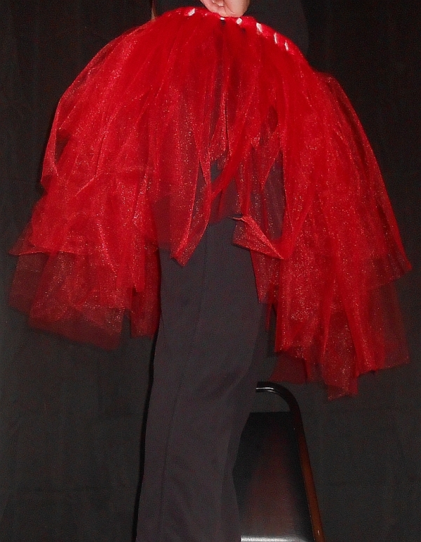 Regular Tattered Tu-Tu Tulle Skirt Side View